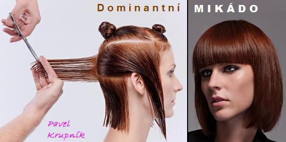 Dominantni MIKADO
